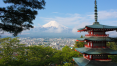 【証券口座の開設】日本株(SBG株)は、1株から買えるSBI証券/がおすすめです!